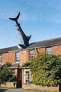 The Headington Shark