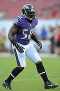 Baltimore Ravens linebacker Elvis Dumervil (58) during a preseason NFL game at Raymond James Stadium on Aug. 8, 2013 in Tampa, Florida. <br /> <br /> &copy;2013 Scott A. Miller