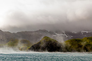 Right Whale Bay, South Georgia