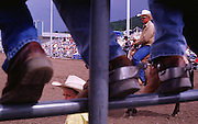 "06 AUGUST 2000 - WILLIAMS, AZ: A ""pickup man"" watches a competitor at the 22nd Annual Cowpunchers' Reunion Rodeo in Williams, Arizona, Aug 6.  The Cowpunchers' Reunion Rodeo is held for working cowboys from the ranches in Arizona and the region. The pickup man's job is to swoop in at the end of the ride and pull the competitor off the bucking bronc or bull.  PHOTO BY JACK KURTZ"