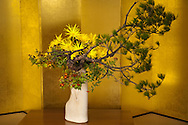 "Ikebana ""living flowers"" is the Japanese art of flower arrangement, also known as kado the ""way of flowers"".  It is a popular pastime in Japan particularly with women of a certain age."
