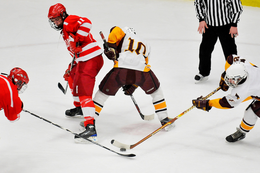 Matt Dixon | The Flint Journal..Logan Thomas (far left) and Alex Duncel (far right) fight for the puck after Nick Webb (11) and Brandon Pirtle (10) finish a faceoff in a pre-regional game at the Perani Arena, Tuesday, March 1. The Swartz Creek Dragon's defeated the Davison Cardinals 2-1.