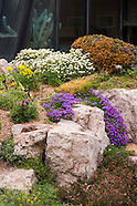 20160423 Rock Alpine Garden in Spring