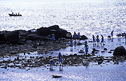 School girsl play on the reef next to the Galle Fort.