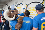 Los Angeles Rams mascot Rampage, running back Darrell Henderson and guard Chandler Brewer during community improvement project at Belvedere Elementary School to upgrade play and social spaces around the school by building a new playground structure, painting murals and basketball backboards and landscaping., Friday, June 14, 2019, in Los Angeles, Calif. (Ed Ruvalcaba/Image of Sport)