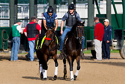 Derby 142 hopeful Nyquist with Jonny Garcia, left, up were on the track for training, Monday, May 02, 2016 at Churchill Downs in Louisville.