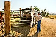 Henry Real Bird, Real Bird Bucking Horses, unloads their horses, Crow Fair Rodeo, Montana
