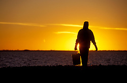 Stock photo of a silhouette of a local resident returning with a bucket of oysters at sunrise