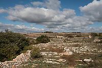 Parco Nazionale Dell'Alta Murgia