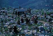 Guatemala. cemetery  Zunil  Guatemala       /   le cimetiere  Zunil  Guatemala    /  R00009/2    L0007340  /  R00009  /  P0004101