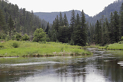 Spearfish Creek south of Spearfish and north of Lead South Dakota