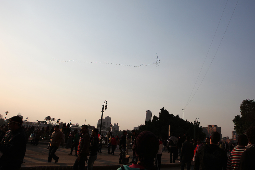 """A flying """"V"""" over the heads of pro-democracy protesters outside the Egyptian State TV building on 11 February."""