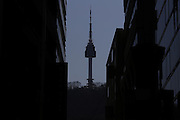 N tower on the Mountain Nam or Namsan in Seoul March 12, 2015. Photo by Lee Jae-Won (SOUTH KOREA) www.leejaewonpix.com/