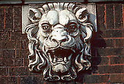 CHICAGO, ARCHITECTURE terra cotta relief of a lion on apartment