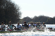 London, United kingdom. Cambridge UBC. Pre 2014 Varsity Boat Race Fixture, Cambridge University BC vs Molesey Boat Club, over the Championship Course; Putney to Mortlake, River Thames, Greater London on Sunday  16/03/2014 [Mandatory Credit: Peter Spurrier/Intersport Images]<br /> <br /> CAMBRIDGE; Bow: Michael THORP, 2: Luke JUCKETT,  3: Ivo DAWKINS, 4: Steve DUDEK, 5: Helge GRUETJEN, 6: Matthew JACKSON, 7: Joshua HOOPER, Stroke: Henry HOFFSTOT, Cox: Ian MIDDLETON<br /> <br /> MOLESEY BC; Bow: Sam SCRIMEGOUR, 2: Pete ROBINSON, 3: Matt TARRANT, 4: Fred GILL , 5: Mo SBIHI,  6: Phil CONGDON, 7: George NASH, Stroke: James FOAD, Cox: Henry FIELDMAN