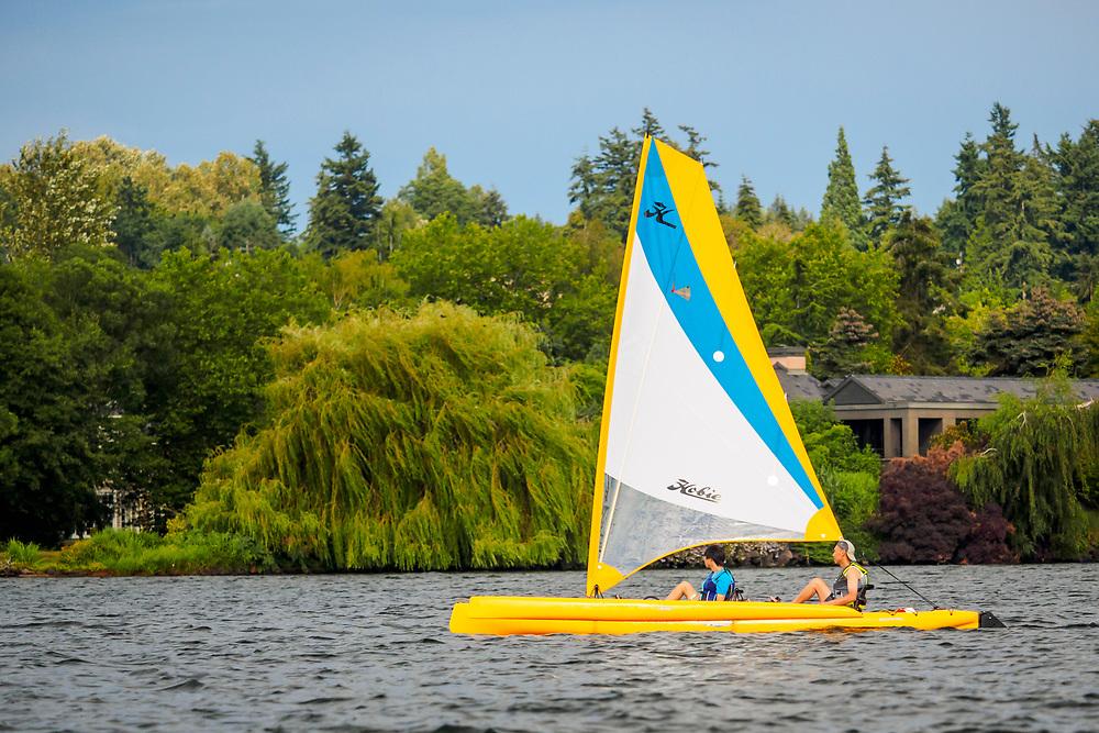 United States, Washington, Bellevue, sailboat on Lake Washington