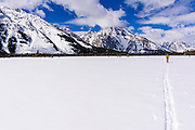 Backcountry skier under Mount Moran, Grand Teton National Park, Wyoming