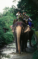 A family of Indian tourists aboard a trained elephant in Royal Chitwan National park.