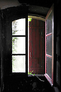 nature starting to grow inside through the window in an abandoned house