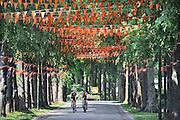 Nederland, Hernen, 28-5-2012In de hoofdstraat van dit dorp in gelderland hangen oranje vaantjes vanwege het EK in Polen en Oekraine.Foto: Flip Franssen/Hollandse Hoogte
