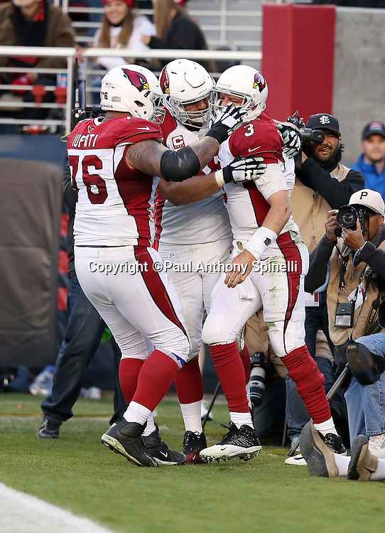 Arizona Cardinals quarterback Carson Palmer (3) gets congratulations from Arizona Cardinals guard Mike Iupati (76) and another teammate after Palmer runs for a late fourth quarter touchdown that gives the Cardinals a 19-13 lead during the 2015 week 12 regular season NFL football game against the San Francisco 49ers on Sunday, Nov. 29, 2015 in Santa Clara, Calif. The Cardinals won the game 19-13. (©Paul Anthony Spinelli)