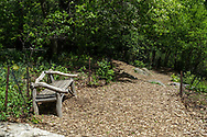 Rustic bench and woodland path along The Pool in Central Park.