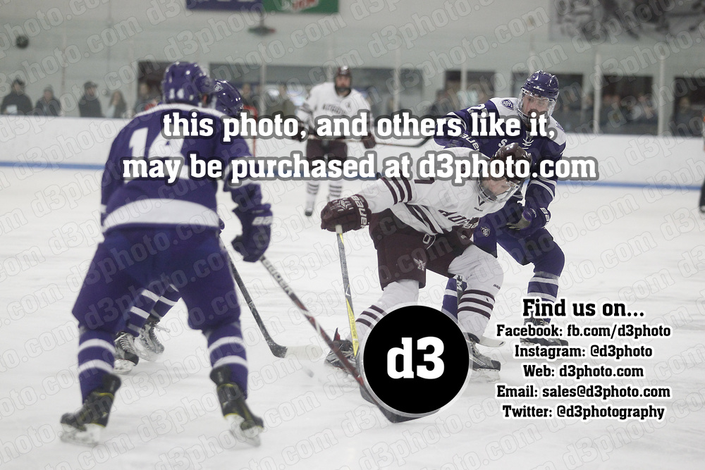 Men's Ice Hockey: Augsburg University Auggies vs. University of St. Thomas (Minnesota) Tommies