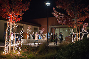 Guests walk through the Civic Center Plaza which is illuminated by reindeer decorations during the Christmas Tree Lighting Ceremony at the Milpitas City Hall's Civic Center in Milpitas, California, on November 30, 2015. (Stan Olszewski/SOSKIphoto)