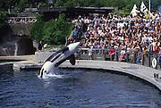 Vancouver Aquarium, Vancouver, Canada<br />