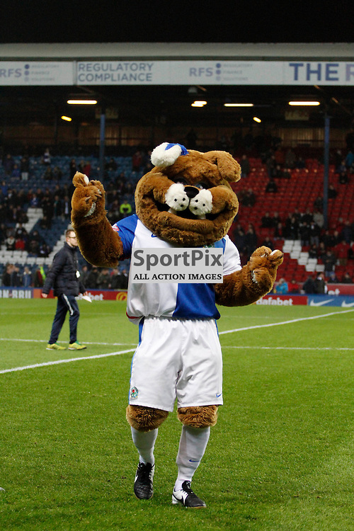 The Blackburn mascot dances during Blackburn Rovers v Nottingham Forest, SkyBet Championship, Monday 14th December 2015, Ewood Park, Blackburn