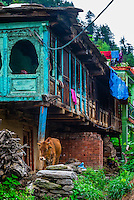 Buildings in Old Manali, Himachal Pradesh, India.