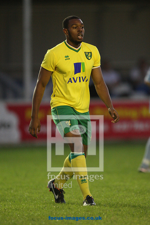 Patrick Drmola of Norwich in action during a pre season friendly at New Lodge Stadium, Billericay...Picture by Paul Chesterton/Focus Images Ltd.  07904 640267.4/8/11