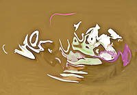 Abstract pond,fluid shapes in light green and pink tones colors on brown background.
