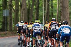Leading group with Wesley Kreder of Wanty - Gobert Cycling Team during 2019 Dutch National Road Race Championships Men Elite, Ede, The Netherlands, 30 June 2019, Photo by Pim Nijland / PelotonPhotos.com | All photos usage must carry mandatory copyright credit (Peloton Photos | Pim Nijland)
