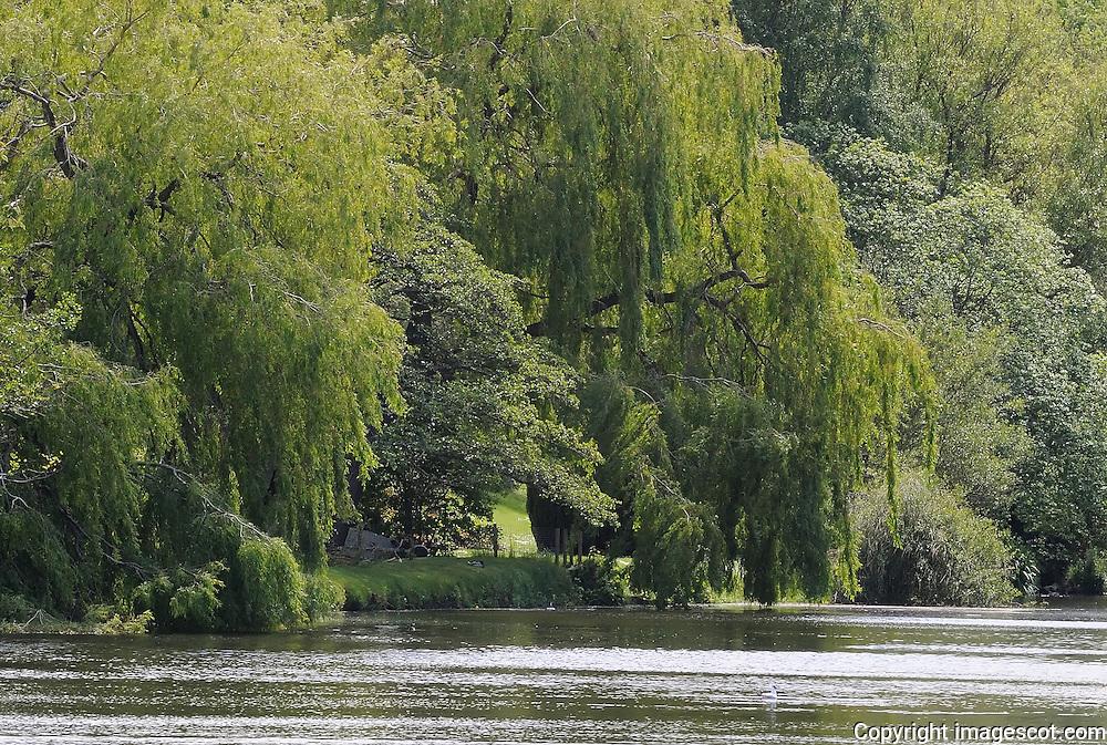 River Tyne, Haddington