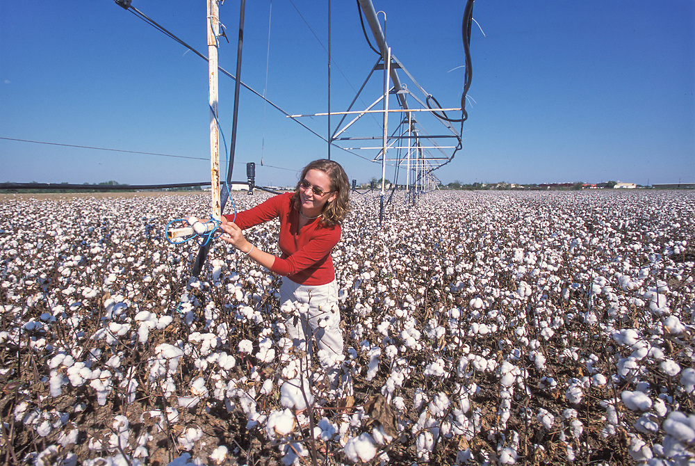 Texas, USA - Megan Laffere of Texas A&M checks monitor on pivot irrigation system in cotton at Uvalde research station