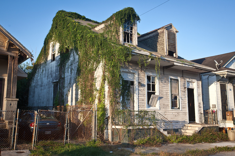 B3lighted home overgrown with weeds in New Orleans  nearly seven years after Hurricane Katrina.