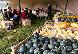 Kilduff Farm, East Lothian, Scotland, United Kingdom, 17 October 2019. Pumpkin Patch: The pick your own pumpkin patch gears up for its opening tomorrow. In its second year, Lucy and Russell Calder and their children make final preparations for visitors. The patch is open this weekend and next, selling a variety of Halloween carving pumpkins and culinary pumpkins.  Pictured: Sonia Lee, cook & nutritionist holds a masterclass in cooking with culinary punmpkinsSally Anderson | EdinburghElitemedia.co.uk