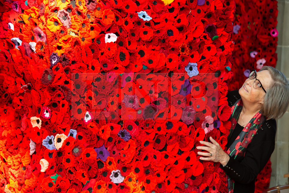 © Licensed to London News Pictures. 9/10/2018. Warwick, UK. Poppy display. Sixty two thousand, four hundred and thirty eight poppies have been assembled in St Mary's  church Warwick to commemorate the ending of the first World War. The poppies have been produced by local people, groups and school children with six hundred and ten alone covering the bell near the altar. As well as red poppies there are differing colours to signify conscious objectors, animals and pigeons killed in the Great War. Pictured, Gill Benson next to one of the plinths in the church. Photo credit: Dave Warren/LNP