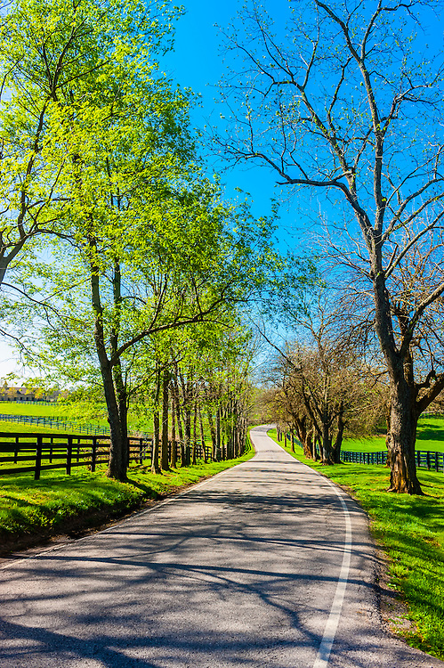 Pisgah Pike, Versailles, near Lexington, Kentucky USA.