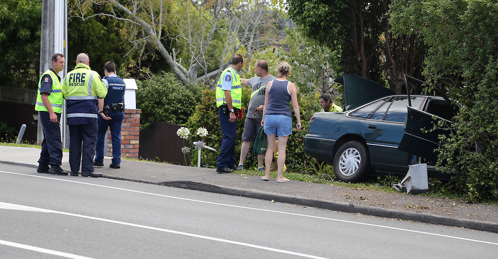 A car has hit a pedestrian and ended up on the verge on Don Buck Road, Massey, Auckland, New Zealand, Sunday, Januray 24, 2016. Credit:SNPA / Hayden Woodward
