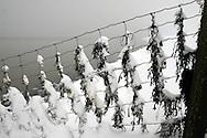 Sexbierum, 2 maart 2005. 20-30 cm sneeuw gevallen.