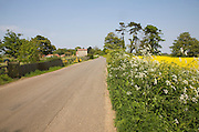 Quiet country road passes verge and fields, Bawdsey, Suffolk, England