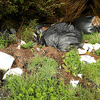 Just some of the rubbish left in different locations in the Ennistymon area.<br />