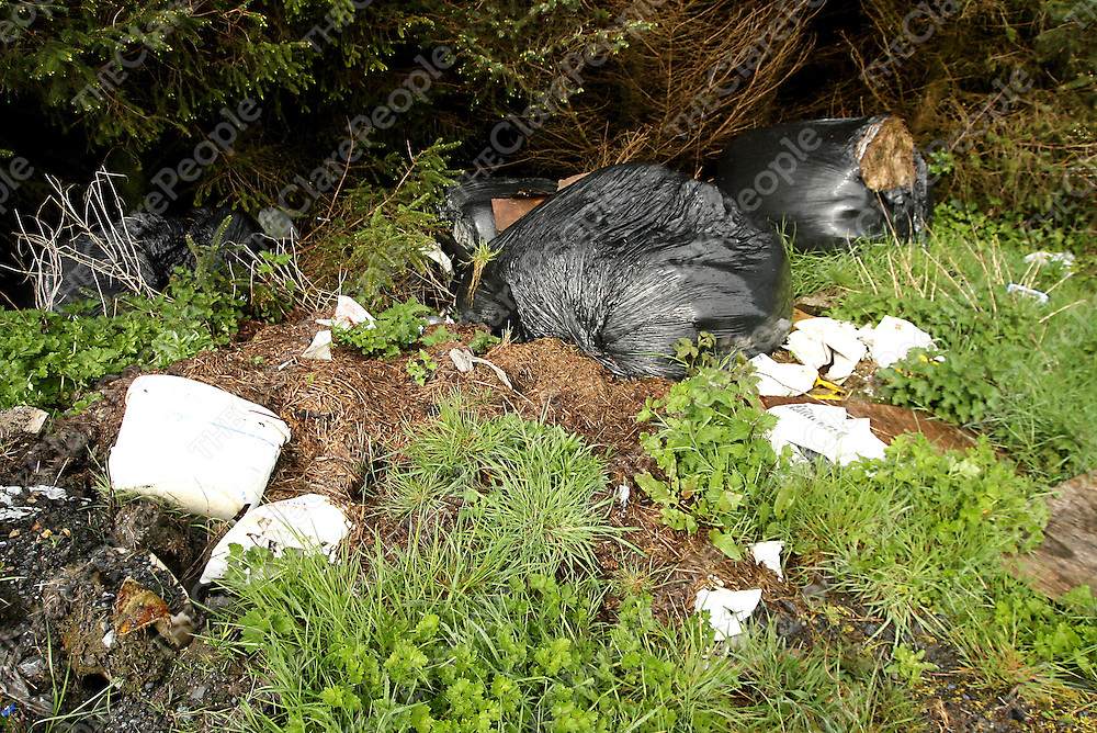 Just some of the rubbish left in different locations in the Ennistymon area.<br /> Photograph by Yvonne Vaughan