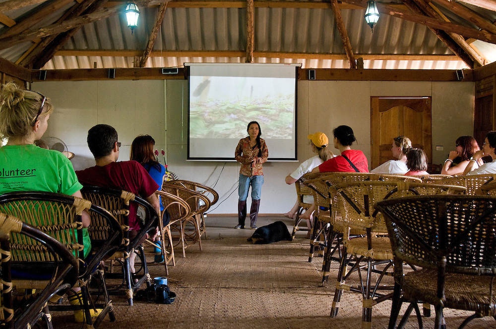"After lunch Lek takes time-out to speak to a room full of volunteers and tourists.  She opens by telling the group Elephant Nature Park tries to focus on education which can stop a lot of cruelty.  From the back row a male volunteer, Kingsley Williams from Australia asks, ""Is any kind of elephant riding wrong?""  ..Lek responds: ""I have to tell you, I don't like it.  But I don't blame people who ride them, because they want the experience, but if they know what is behind the training it is not good.  I can tell you that with elephant trekking in Thailand 100 percent of the elephants go to the traditional training crush.  I'm going to show you this video I filmed across the border in Myanmar, but I warn you, it is very difficult to watch."".  .The video opens with horrendous shrieks from a baby elephant whose feet and neck are chained inside a tight stockade made from wood logs.  Villagers jab at its body with bamboo sticks, some with sharpened spikes on the end to inflict more pain.  [Optional text: Blood drips from the wounds.  The shrieks from the animal continue.  Another villager smashes it across the face with a heavy pole.  Water like tears drip from its eyes.  The elephant continues to resist, but it can't move, and each time the beating gets worse.  At one point a villager's uses one of the spikes to stab deep into its ear canal.]  Several people in the audience begin to cry, some have to leave the room.  This is the traditional training crush, used for centuries to break the will of these highly intelligent creatures, so they will obey and perform for humans.  Elephants can be subject to the crush for 3 days up to one month, depending on how long it takes to destroy their spirit.   .."