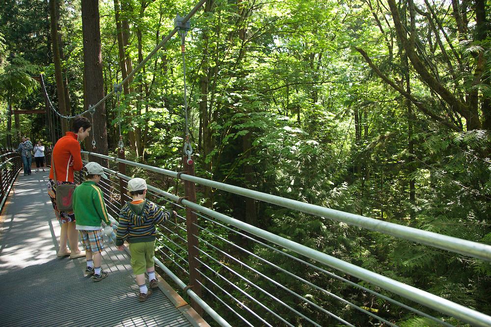 North America, United States, Washington, Bellevue, woman in Bellevue Botanical Garden, Ravine Experience suspension bridge