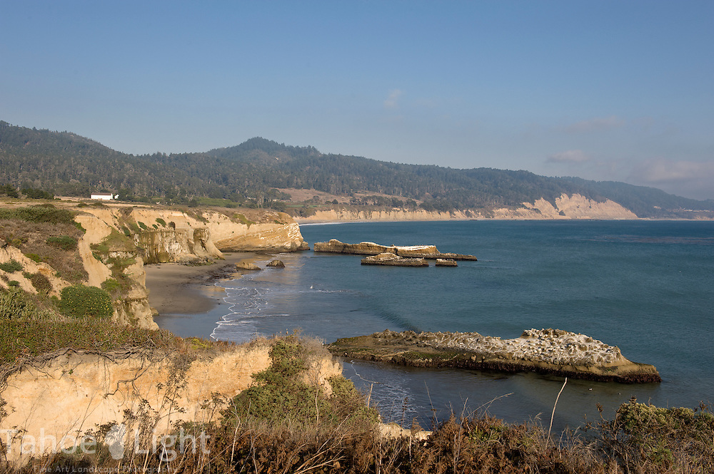 Cove Beach and the coastline  at the Ano Nuevo state park along Highway One on the Pacific Ocean near the coastal town of Pescadero, just north of Santa Cruz. Ano Nuevo is a prime mating ground for Elephant Seals in the winter.
