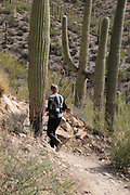 A woman runs on Starr Pass Trail in the Tucson Mountains west of Tucson, Arizona, USA, in the Sonoran Desert.