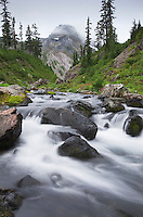 Bagley Creek, Heather Meadows Recreation Area, North Cascades Washington